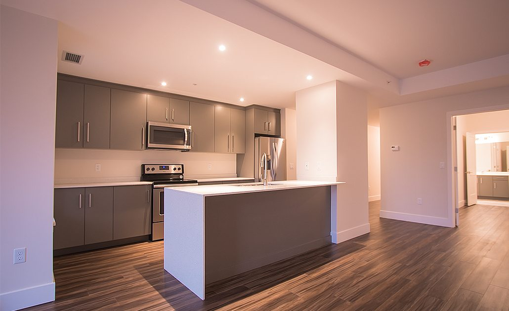 Suite 201 - Kitchen